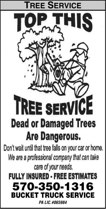 Top This Tree Service